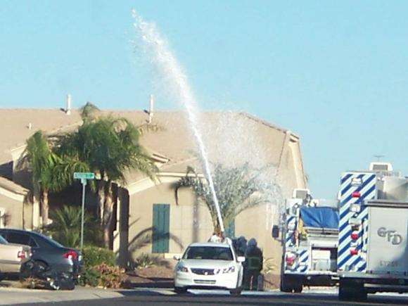 Arizona fire departments often respond to bee swarms