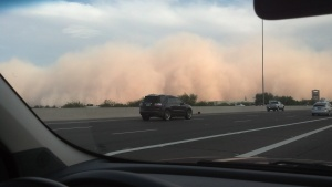 Arizona haboob in the monsoon season